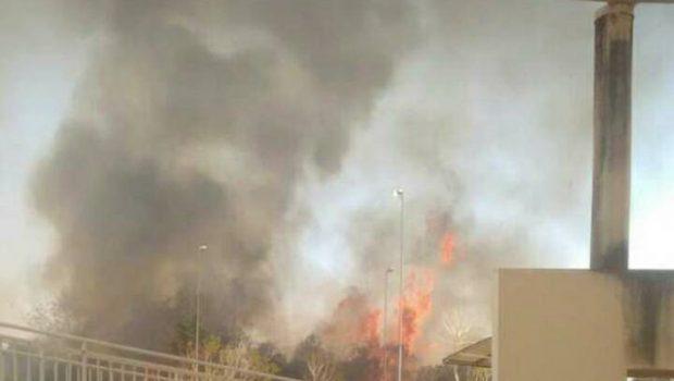 Incêndio em vegetação atinge campus da UEG em Itumbiara
