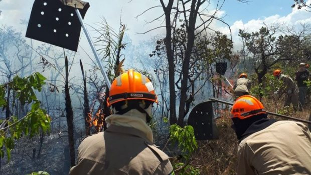 Ministro e vice-governador sobrevoam área atingida por incêndio na Chapada dos Veadeiros