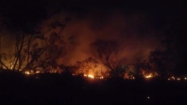 Incêndio na Chapada dos Veadeiros está controlado e próximo de ser extinto