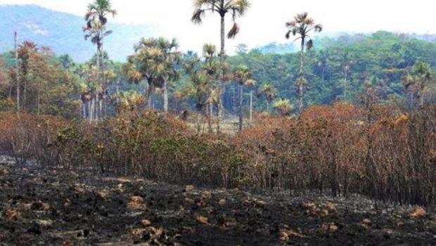 Fogo na Chapada é declarado extinto, ICMBio confirma reabertura do parque