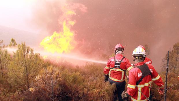 Mais de 1,3 mil bombeiros combatem seis grandes incêndios em Portugal