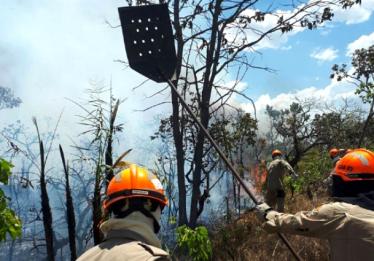 Combate ao incêndio no Parque Nacional da Chapada dos Veadeiros ganha reforço