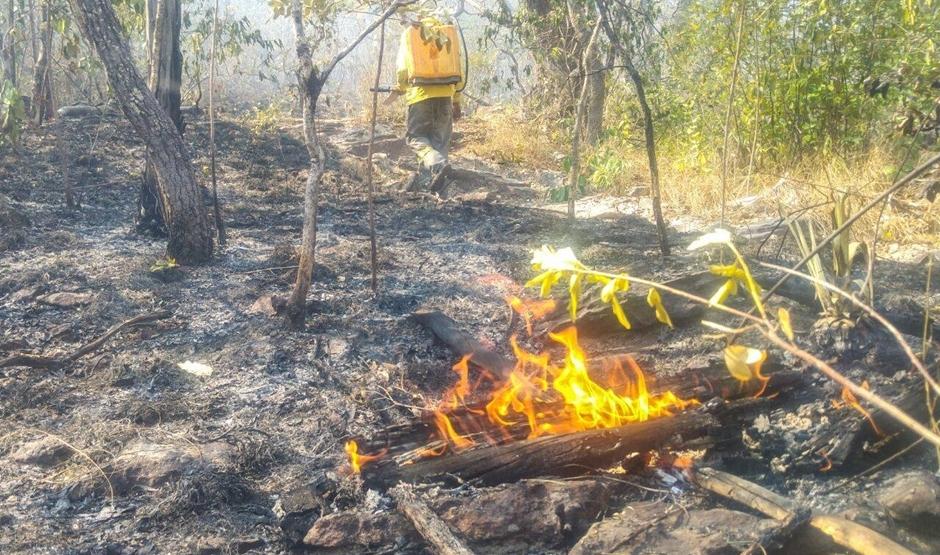 Mais de 18 mil hectares da Chapada dos Veadeiros já foram destruídos pelo fogo
