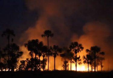 Corpo de Bombeiros alerta para aumento de incêndios durante período de seca em Goiás