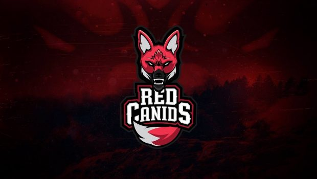 Corinthians pode fechar acordo com a Red Canids