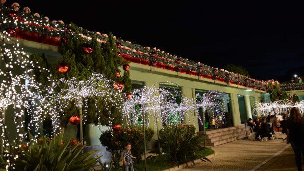 Decoração de Natal da Praça Cívica será lançada nesta sexta-feira (1º)