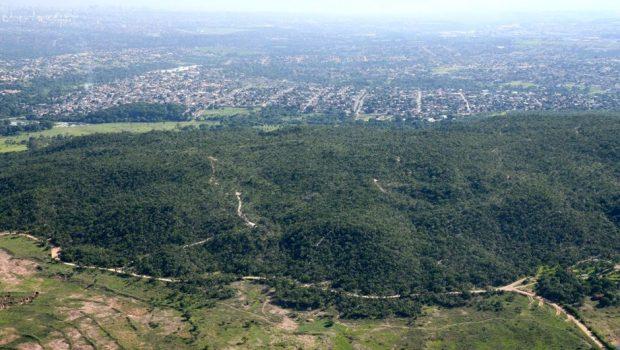 Reserva ecológica Serra das Areias recebe ações de revitalização