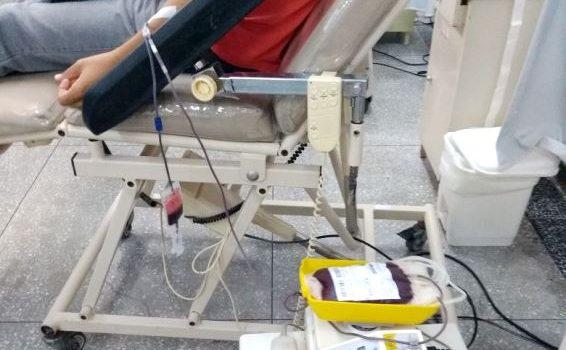 Dia Nacional do Doador: bolsa de sangue coletada pode salvar até dez vidas