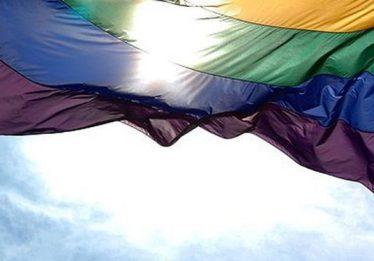 Quantidade de casamentos entre pessoas do mesmo sexo diminui em Goiás, aponta IBGE