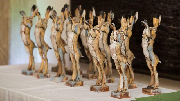 Aluno da UFG recebe prêmio internacional por solução alternativa para testes em animais