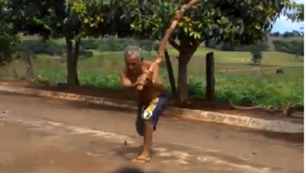 Homem é flagrado em vídeo espancando cachorro até a morte, em Palminópolis