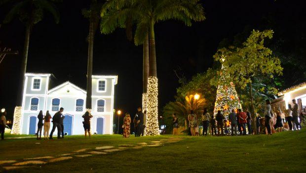 É hora de montar a árvore de Natal