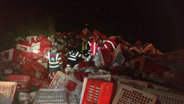 Motorista de caminhão carregado de aves perde o controle e tomba na BR-153, em Piracanjuba
