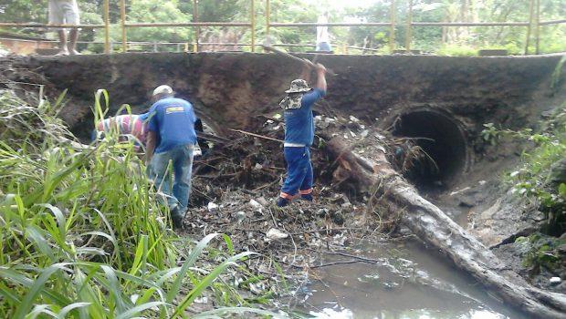 Funcionários da prefeitura fazem limpeza de ponte sobre a rua Nonato Mota, em Goiânia