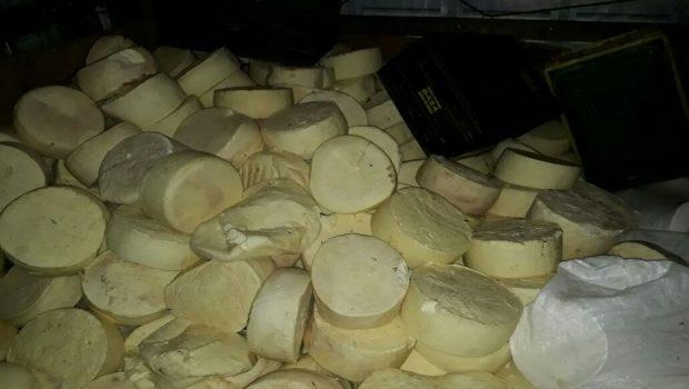 Duas toneladas de queijo estragado seriam vendidas em comércio de Anápolis
