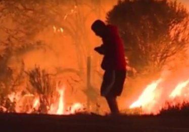 Homem se arrisca para salvar coelho em incêndio na Califórnia