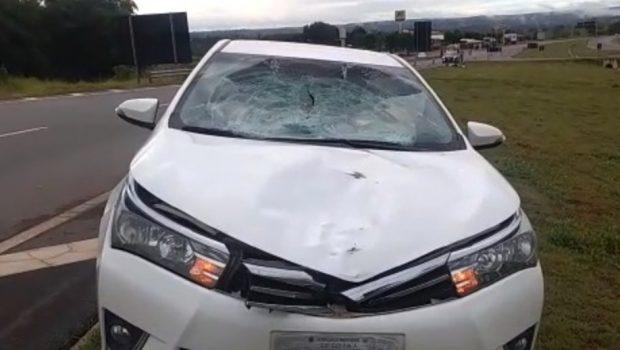 Idoso morre atropelado na BR 060, no município de Alexânia