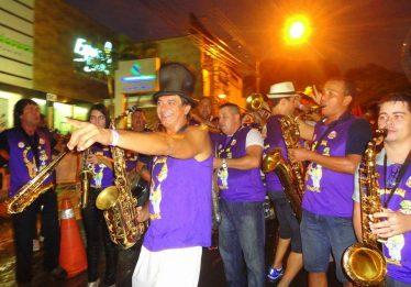 Neguinho da Beja-Flor e 11 blocos animam o Carnaval dos Amigos