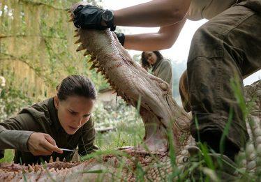 Sem passar pelo cinema, Aniquilação chega à Netflix em março