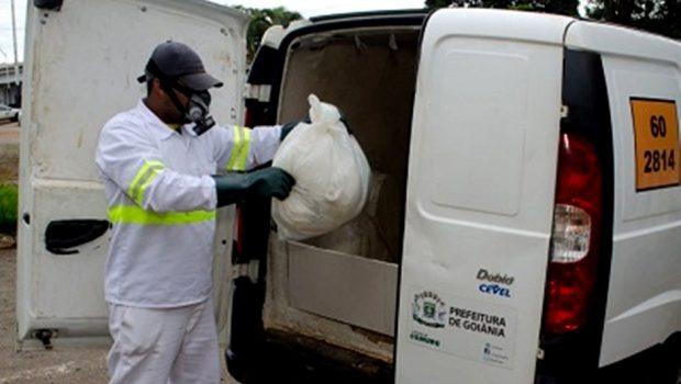 Comurg alerta para descarte correto de animais mortos