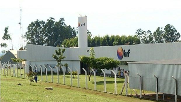 Ministério suspende exportação de frango de 3 frigoríficos da BRF
