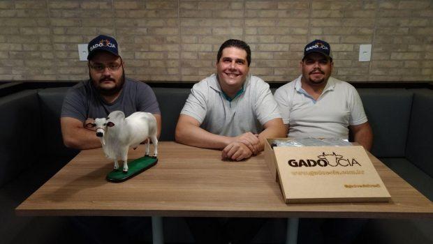 Gado e Cia: aplicativo facilita a negociação entre pecuaristas
