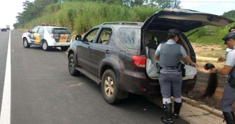 Casal é pego transportando 227 kg de cabelo em rodovia de São Paulo