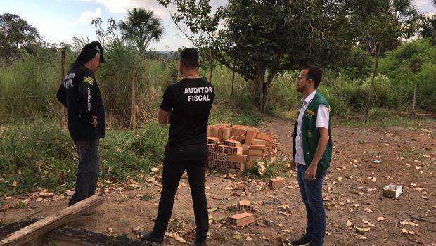 Equipes da Amma fiscalizam áreas de poluição ambiental em Goiânia