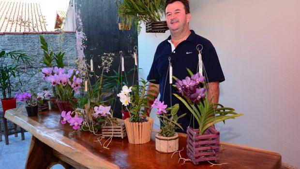 Exposição de orquídeas começa nesta sexta-feira (25), em Piracanjuba