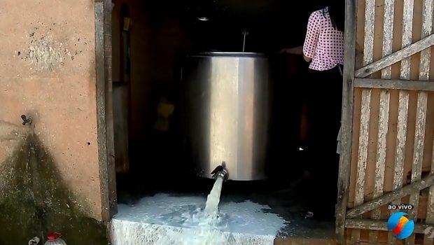 70 milhões de animais morreram e 7 milhões de litros de leite foram desperdiçados em Goiás