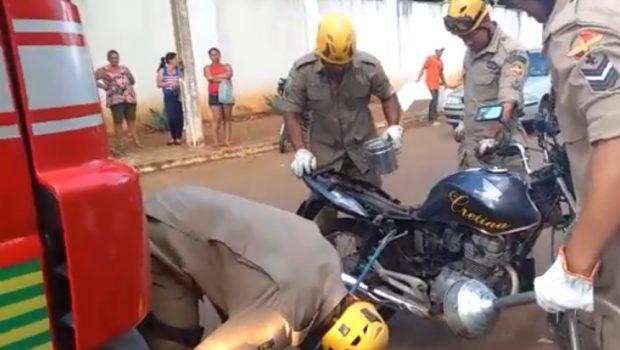 Bombeiros são acionados para resgatar cobra que estava dentro de uma moto, em Anápolis