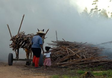 Campanha marca o Dia Mundial de Combate ao Trabalho Infantil