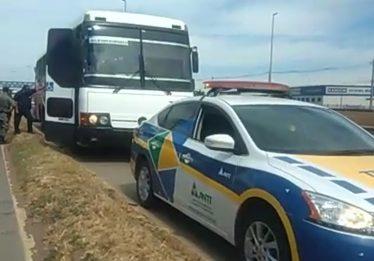 Apreendido ônibus clandestino que transportava passageiros, cães e motos na BR-153