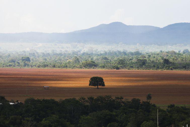 Após 25 anos, país indica conselho para Reserva da Biosfera do Cerrado