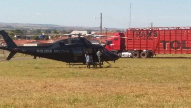 Polícia recupera seis carretas de gado roubado em Porangatu