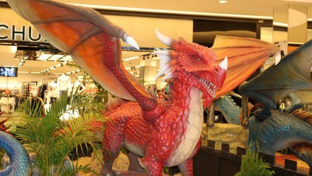 Exposição Internacional de Dragões chega a Goiânia