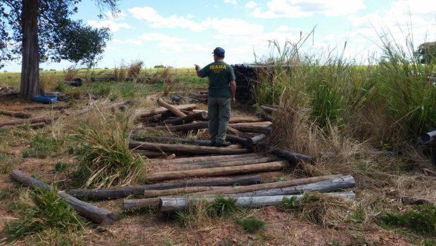 Operação contra desmatamento ilegal aplica mais de R$ 1,1 mi em multas na região de São Miguel do Araguaia