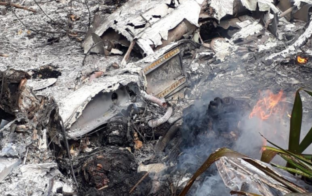 Aeronave foi consumida pelas chamas após o impacto (Foto: divulgação/Polícia Civil)