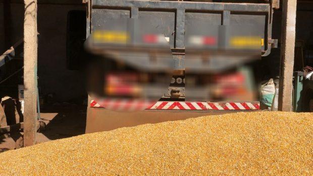 Polícia apreende carga de 17 toneladas de milho, em Alexânia