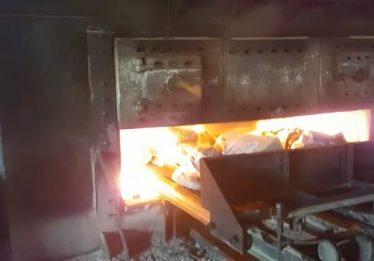 Quase cinco toneladas de drogas são apreendidas e incineradas pela Denarc em Rio Verde