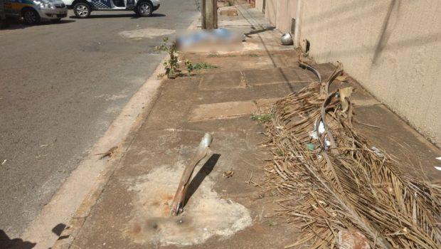 Motociclista morre após atropelar lixeira e colidir contra poste no Parque das Flores, em Goiânia