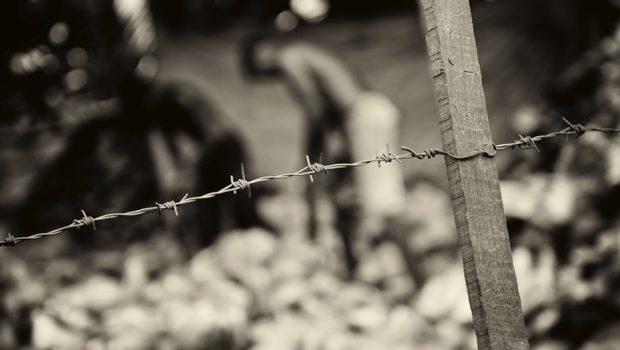 Força-tarefa resgata 86 'escravos' em fazenda de café em Goiás