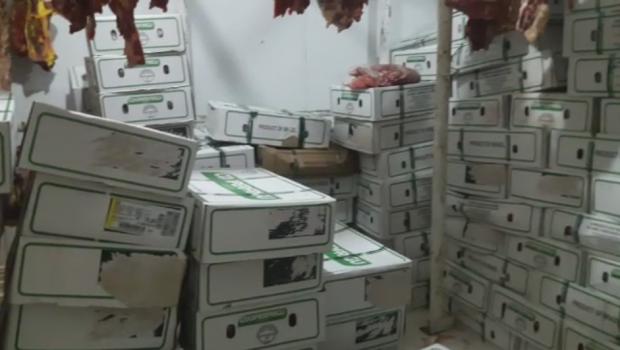 Polícia apreende 7 toneladas de carne roubada em açougue na Vila Lucy