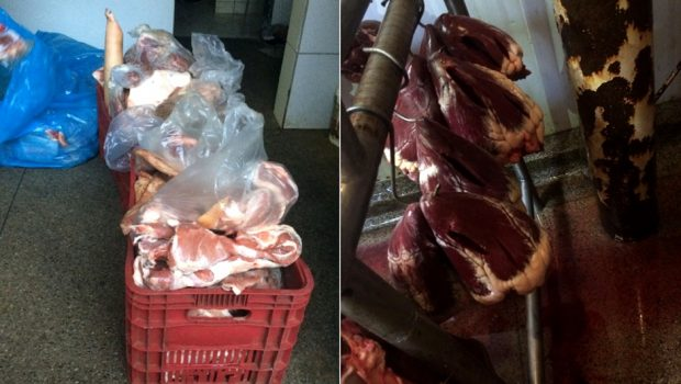Quase três toneladas de carne clandestina são apreendidas em Itaberaí