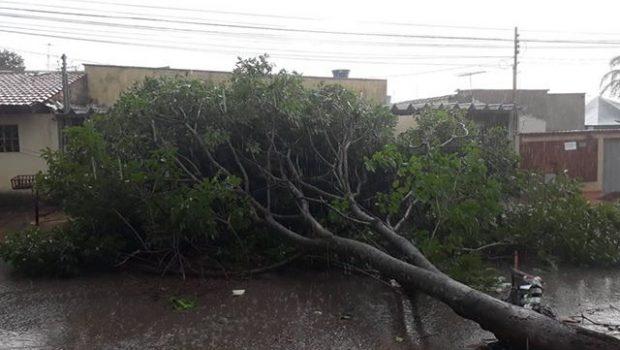 Moradores do Jardim Guanabara I denunciam falta de energia há mais de 24h