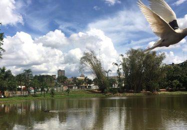 Parque Areião: Convivência com a natureza e lazer para toda a família