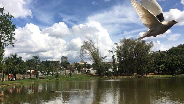 Mesmo em reforma, Parque Areião ainda é refúgio dos amantes da natureza na região Sul de Goiânia
