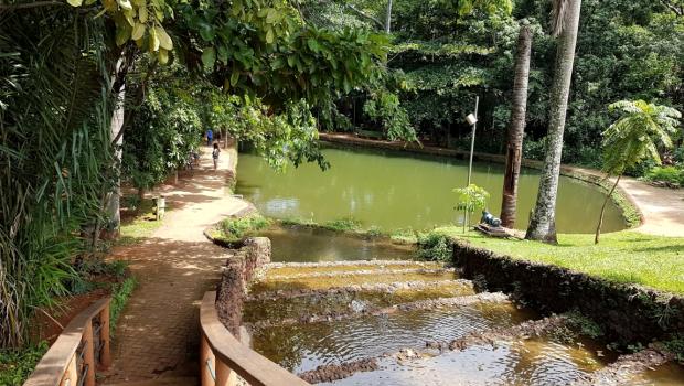 Parque mais antigo de Goiânia, Bosque dos Buritis reserva natureza e tranquilidade no centro da cidade