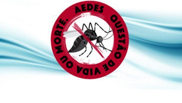 Goiânia Contra o Aedes: aplicativo ajuda a denunciar criadouros do mosquito