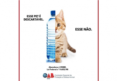 OAB-GO e projeto Tampatas lança campanha em conjunto contra o abandono animal